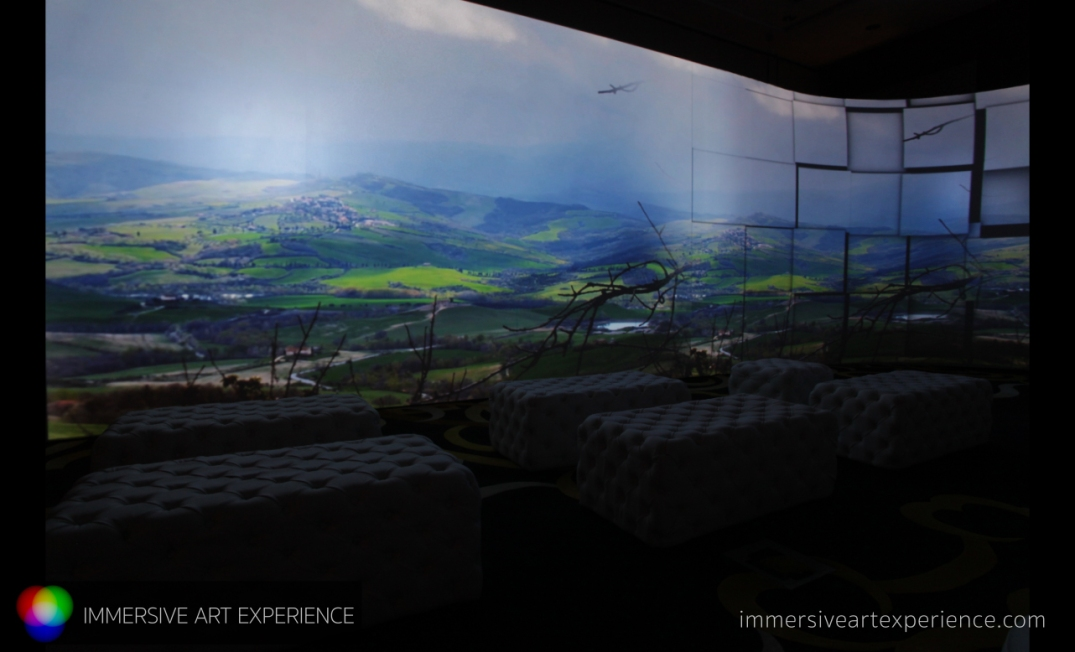 IMMERSIVE ART EXPERIENCE_00140