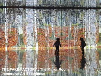 THE FAKE FACTORY - THE MIRROR ROOM.001