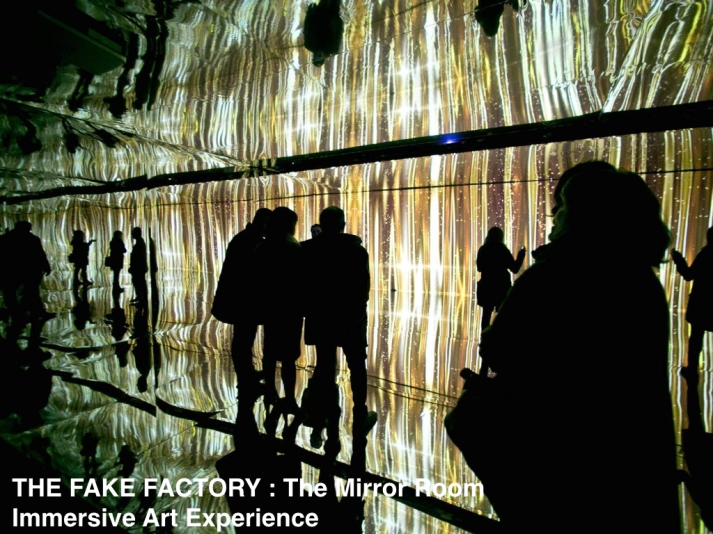 THE FAKE FACTORY - THE MIRROR ROOM.005