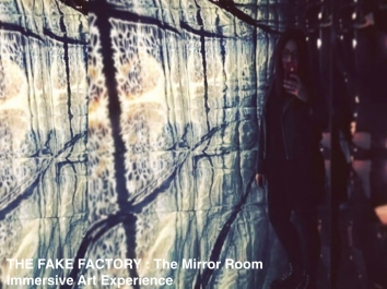 THE FAKE FACTORY - THE MIRROR ROOM.019