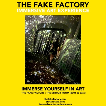 THE FAKE FACTORY - THE MIRROR ROOM IMMERSIVE ART_00137