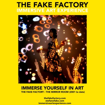 THE FAKE FACTORY - THE MIRROR ROOM IMMERSIVE ART_00169
