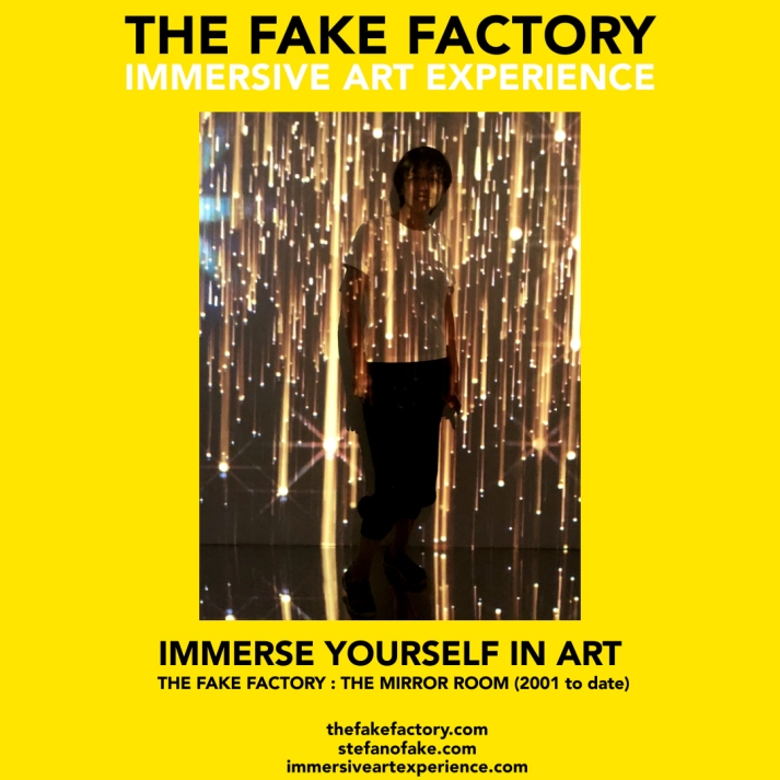 THE FAKE FACTORY - THE MIRROR ROOM IMMERSIVE ART_00298