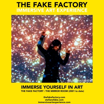 THE FAKE FACTORY - THE MIRROR ROOM IMMERSIVE ART_00401