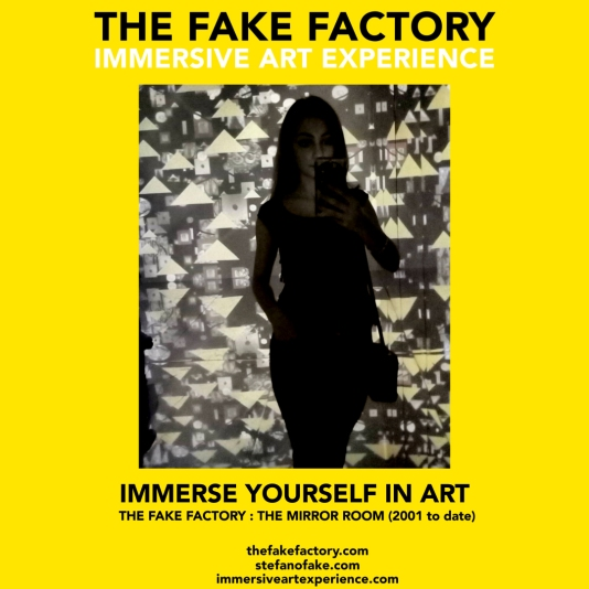 THE FAKE FACTORY - THE MIRROR ROOM IMMERSIVE ART_00440