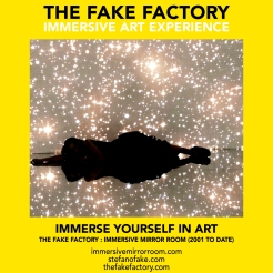 THE FAKE FACTORY immersive mirror room_00061