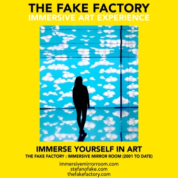 THE FAKE FACTORY immersive mirror room_00374