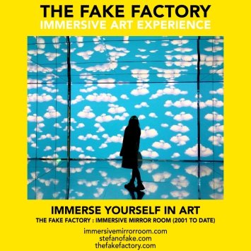 THE FAKE FACTORY immersive mirror room_00378