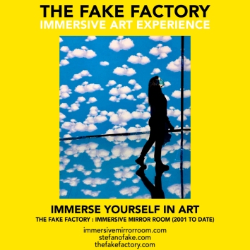 THE FAKE FACTORY immersive mirror room_00446