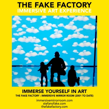 THE FAKE FACTORY immersive mirror room_00455