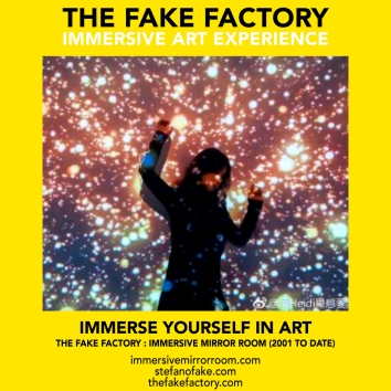 THE FAKE FACTORY immersive mirror room_00602