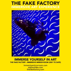 THE FAKE FACTORY immersive mirror room_02001