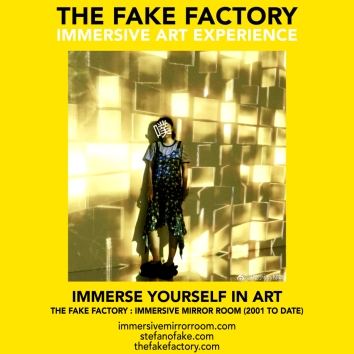 THE FAKE FACTORY immersive mirror room_02032