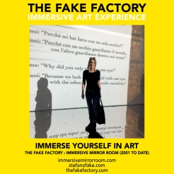 THE FAKE FACTORY immersive mirror room_02037